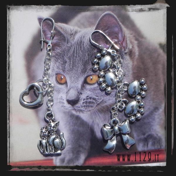 orecchini-cosmo-ray-nascita-cuccioli-gatto-certosino